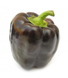 More about Paprika Fialová kráska - Capsicum Annuum - semena papriky - 9 ks