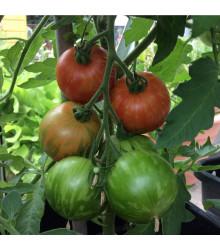 More about Rajče Tigrella - Solanum Lycopersicum - osivo rajčat - 6 ks