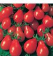 Rajče Červená hruška - prodej semen rajčat- 7 ks