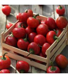 Chilli Large Red Cherry Hot - Capsicum annuum - osivo chilli - 7 ks