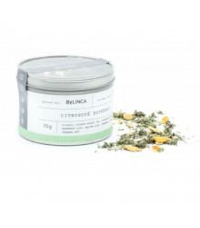 More about Citrusové potěšení - směs bylinek - bylinný čaj - 70 g